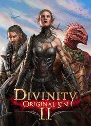 Обложка игры Divinity: Original Sin 2