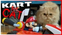 Видео: Mario Kart Live: Home Circuit и домашняя кошка - не лучшая комбинация