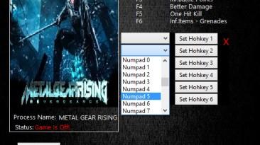 Metal Gear Rising: Revengeance: Трейнер/Trainer (+5) [15.01.2019] {MrAntiFun}