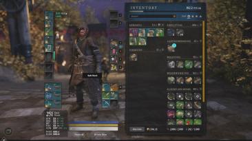 Игрок успешно прокачал своего персонажа в New World до максимального уровня никого не убивая