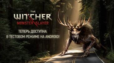 В России началось тестирование The Witcher: Monster Slayer на Android