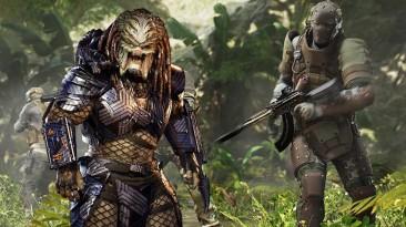 Хищник не настигнул жертву. Пиковый онлайн Predator: Hunting Grounds не превышает несколько сотен человек