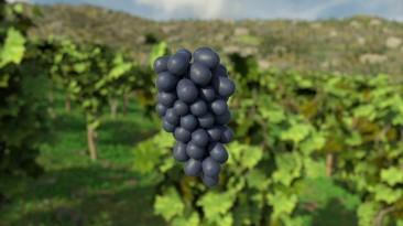 """Анонсирован симулятор виноделия """"Winery Simulator"""""""