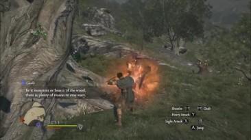Обзор игры Dragon's Dogma: Dark Arisen