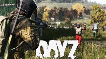 В DayZ вышло обновление 1.10