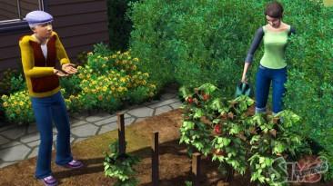 The Sims 3. Почти как в жизни