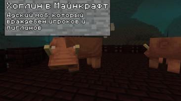 Хоглины в Minecraft Java 1.16