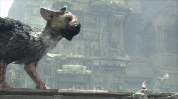 Sony не отменила разработку The Last Guardian благодаря поддержке фанатов