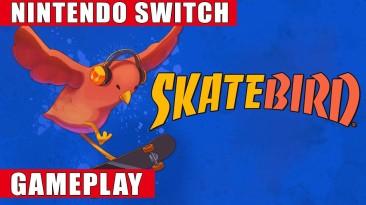 Запись игрового процесса Switch-версии Skatebird