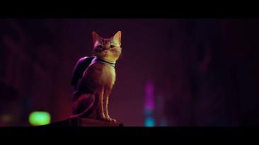 Появились подробности о консольном PS5-эксклюзиве Stray про кота в кибергороде
