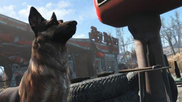"""Fallout 4 """"Фоторежим"""""""