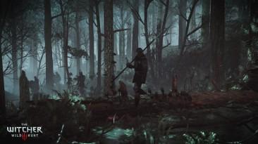 The Witcher 3: Wild Hunt DLC 1-2 v 2.0.0.28