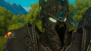 "Witcher 3 ""Доспех Короля-Лича"""