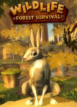 Wildlife: Forest Survival