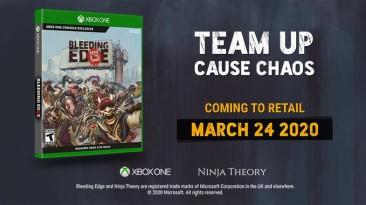 Розовые мечты Ninja Theory: Bleeding Edge получит дисковое издание