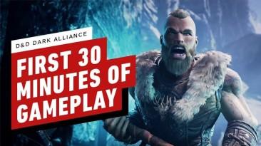 Первые 30 минут игрового процесса Dungeons & Dragons: Dark Alliance