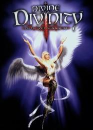 Обложка игры Divine Divinity