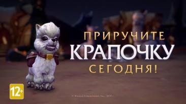 """Трейлер """"благотворительного"""" питомца для World of Warcraft"""