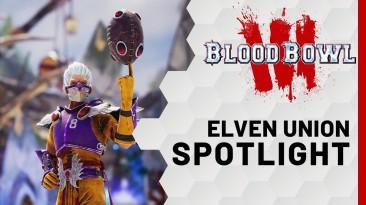 В новом трейлере Blood Bowl 3 был представлен Эльфийский Союз