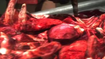 Condemned 2: Bloodshot Игро-клип