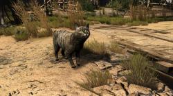 """Witcher 3 """"Улучшенные текстуры животных"""""""