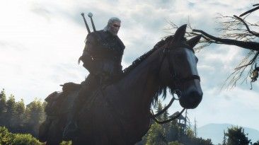 "Witcher 3: Wild Hunt ""Мод на грязную броню / Witcher Armors Dirty and Worn Retexture"""