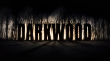 Darkwood: Трейнер/Trainer (+5) [1.2] {MrAntiFun}