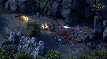 Pillars of Eternity для Switch больше не будет получать обновления из-за аппаратных ограничений