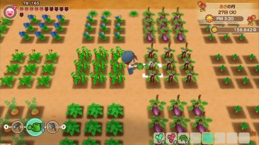 На Nintendo Switch анонсирована Harvest Moon: Friends of Mineral Town