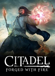 Обложка игры Citadel: Forged with Fire