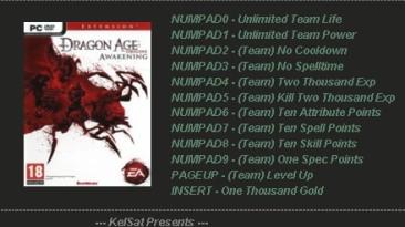 Dragon Age: Origins - Awakening: Трейнер (+11) [1.3] {KelSat}