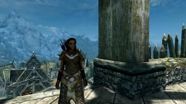 The Elder Scrolls 5: Skyrim - Special Edition: Сохранение/SaveGame (Босмер - 100 LVL; Сюжет не пройден) [Steam]