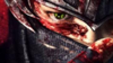 Многопользовательский режим Ninja Gaiden 3 прикроется онлайн-пропуском