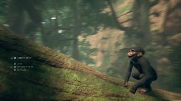 Реальный симулятор эволюции Ancestors: The Humankind Odyssey