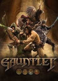 Обложка игры Gauntlet (2014)
