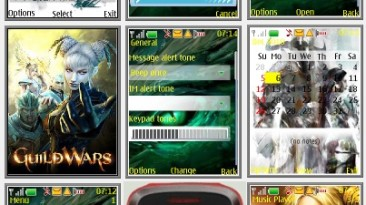 "Guild Wars 2 ""Theme for Nokia s40 240x320"""