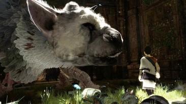 Дракон Трико в The Last Guardian будет принимать собственные решения