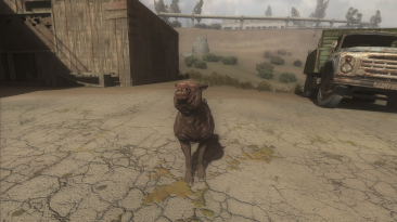 "S.T.A.L.K.E.R.: Call of Pripyat ""Пёс из Fallout 4"""