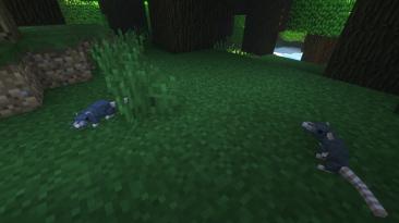 "Minecraft ""Rats [1.14.4] [1.12.2]"""