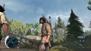 Ей ты, не лезь, это наша драка! Забавный баг в Assassin's Creed III