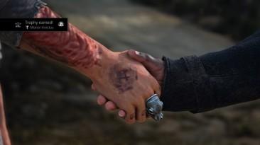 Трофейные скриншоты в Days Gone привязаны к сюжетно значимым событиям