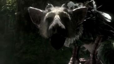 Почему The Last Guardian не показали во время конференции Sony на E3 2014?