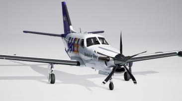 "Microsoft Flight Simulator ""Пак ливреи для Daher TBM 930"""