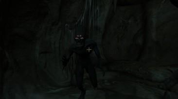 "TES 4: Oblivion ""Чемпион Аркея"""