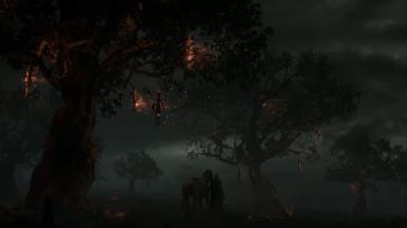 Несколько геймплейных роликов и трейлеров знакомящих с MMORPG Lineage W