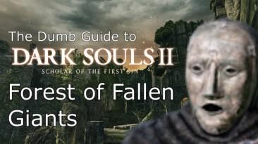 Тупой гайд для Dark Souls 2 Scholar of the First Sin: Лес Павших гигантов