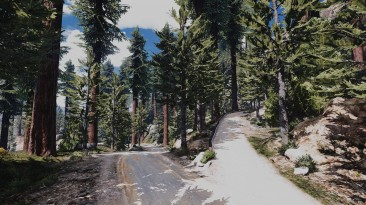 """Grand Theft Auto 5 """"Project Forest(YMAP) 3.4"""""""