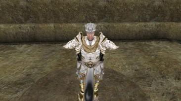 "Morrowind ""Броня короля Артура"""