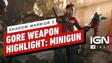 Катана и волшебный глаз - вышел новый трейлер Shadow Warrior 3