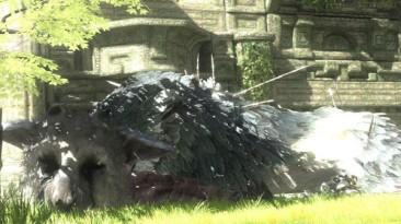 Sony подтвердила, что The Last Guardian все еще находится в разработке